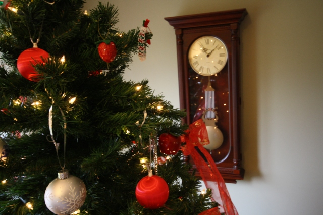 dec 1 2012 tree trimming 089